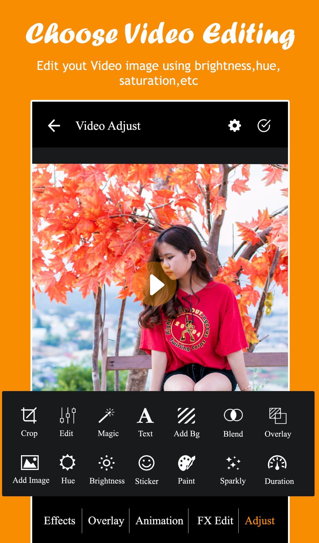 Video-Filter-Video-Effec